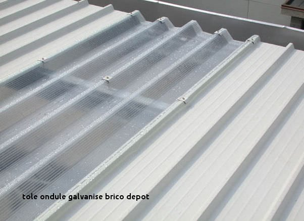 Tole Bac Acier Translucide Brico Depot